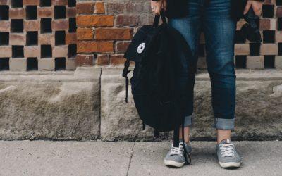 ¿Qué marcas de bolsos y mochilas son veganas?